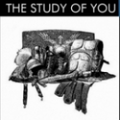 The Study of you - Take a Leap Coaching