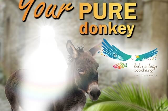 Turn me into Your PURE donkey